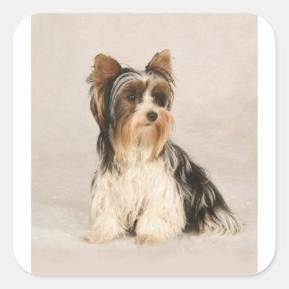 Adesivo Quadrado Pintura da senhorita Mia Foto de Yorkie do retrato