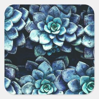 Adesivo Quadrado Plantas azuis e verdes do Succulent