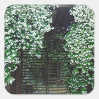 Adesivo Quadrado Porta coberta no jasmim