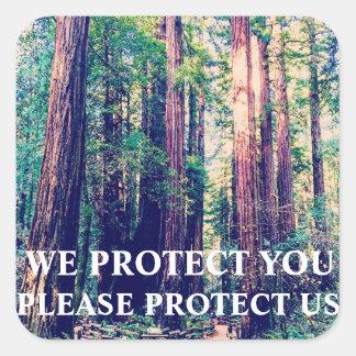 Adesivo Quadrado Proteja a floresta