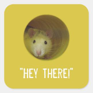 Adesivo Quadrado Rato bonito no animal engraçado do furo