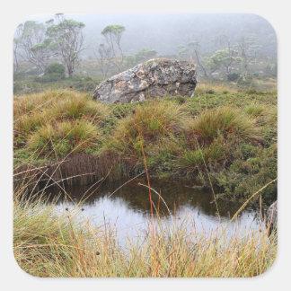 Adesivo Quadrado Reflexões enevoadas da manhã, Tasmânia, Austrália