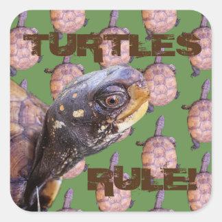 Adesivo Quadrado Regra das tartarugas!