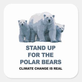Adesivo Quadrado Represente acima os ursos polares