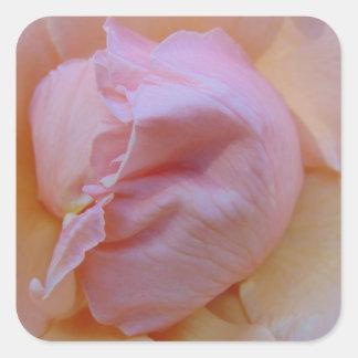 Adesivo Quadrado Rosa delicado