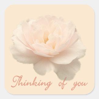 Adesivo Quadrado Rosa do branco e do rosa