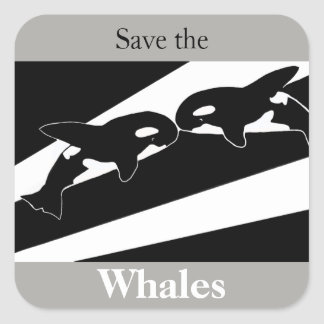 Adesivo Quadrado Salvar as baleias