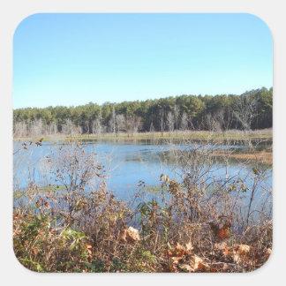 Adesivo Quadrado Santuário de pássaro do lago sams