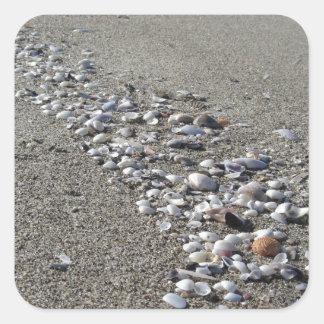 Adesivo Quadrado Seashells na areia. Fundo da praia do verão