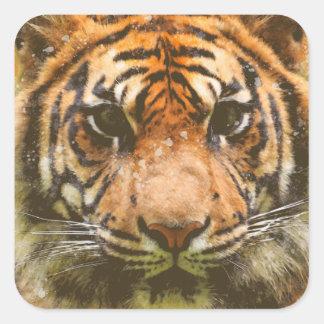 Adesivo Quadrado Tigre