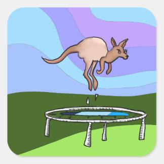 Adesivo Quadrado Trampolim do canguru
