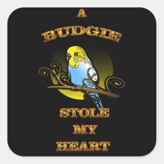 Adesivo Quadrado Um Budgie roubou meu coração