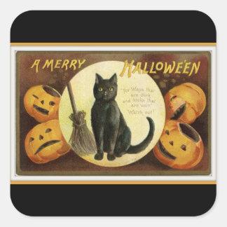 Adesivo Quadrado Um preto alegre do gato preto e das abóboras do