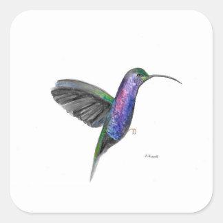 Adesivo Quadrado Watercolour roxo do colibri