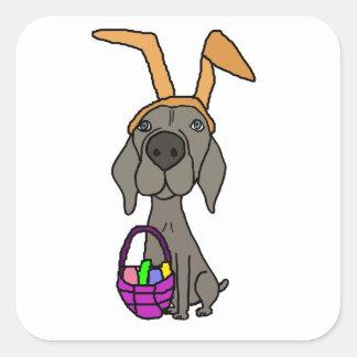 Adesivo Quadrado Weimaraner engraçado bonito com orelhas do coelho