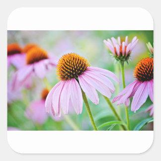 Adesivo Quadrado Wildflowers roxos