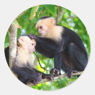Adesivo Redondo Amor do macaco