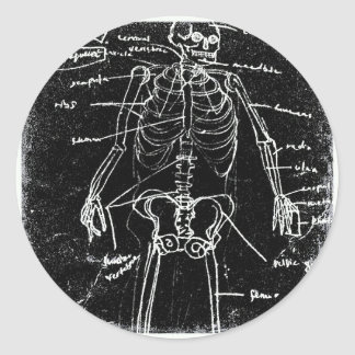 Adesivo Redondo anatomia de esqueleto humana de tokyo do yaie