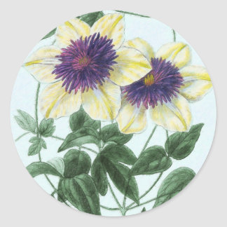 Adesivo Redondo Arte da flor do Clematis