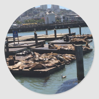 Adesivo Redondo Cais 39 San Francisco Califórnia