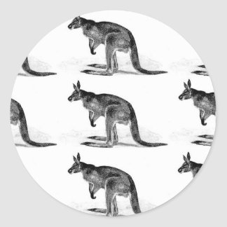 Adesivo Redondo canguru encaixotado - no quadrado