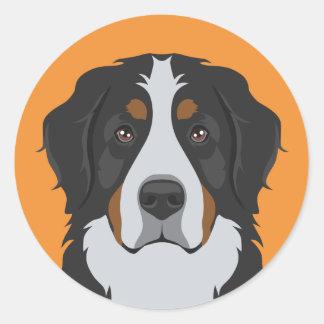 Adesivo Redondo Cão de montanha de Bernese