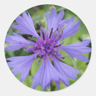 Adesivo Redondo Centáurea bem parecida azul