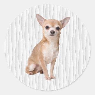 Adesivo Redondo Chihuahua