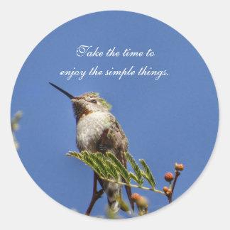 Adesivo Redondo Colibri no ramo por SnapDaddy
