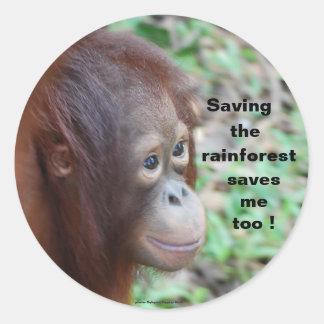 Adesivo Redondo Conservação dos animais selvagens: Orangotango e