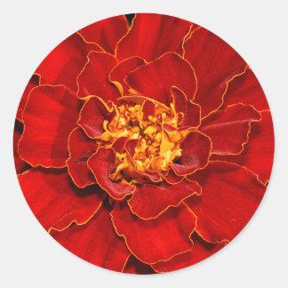 Adesivo Redondo Cravo-de-defunto do vermelho de Durango