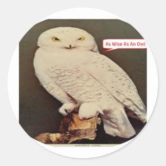Adesivo Redondo desenho branco da coruja