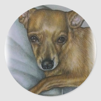Adesivo Redondo desenho da chihuahua da arte do animal do cão