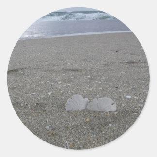 Adesivo Redondo Dólares de areia da praia