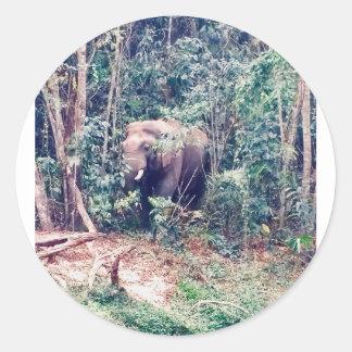 Adesivo Redondo Elefante em Tailândia