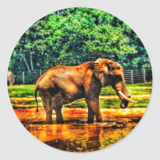 Adesivo Redondo elefante fullsizeoutput_1104