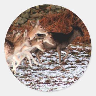 Adesivo Redondo Em suas marcas (cervos)