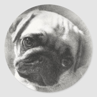 Adesivo Redondo Esboço do cão de filhote de cachorro do Pug