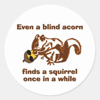 Adesivo Redondo Esquilo cego