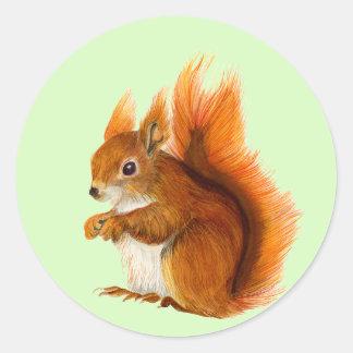 Adesivo Redondo Esquilo vermelho pintado na arte dos animais