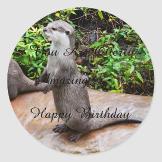 Adesivo Redondo Feliz aniversario surpreendente da lontra,