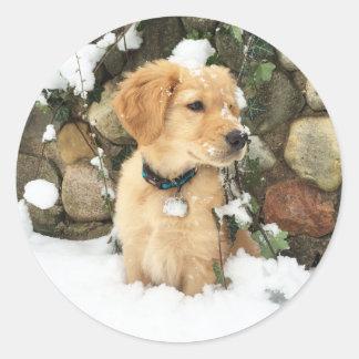 Adesivo Redondo Filhote de cachorro da neve - filhote de cachorro