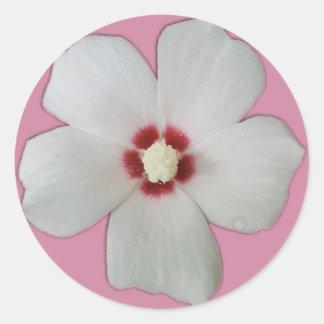 Adesivo Redondo Flor branca do hibiscus
