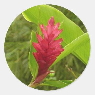 Adesivo Redondo Flor do gengibre vermelho mim