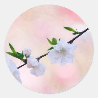 Adesivo Redondo Flor do pêssego