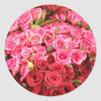 Adesivo Redondo Flores nas Filipinas, no rosa e nas rosas