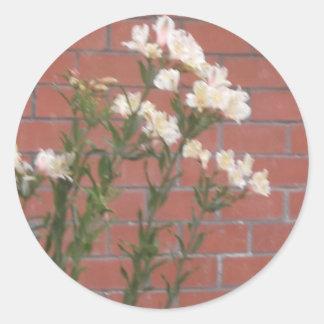 Adesivo Redondo Flores no tijolo
