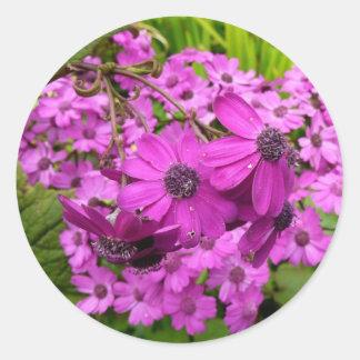Adesivo Redondo Flores roxas de San Francisco