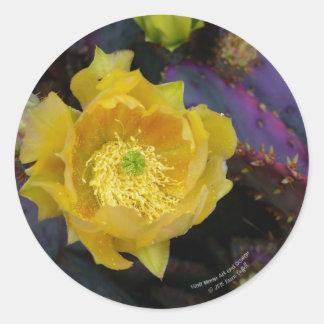Adesivo Redondo Flores roxas do amarelo do cacto do opuntia da