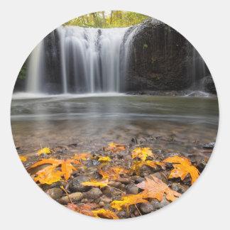 Adesivo Redondo Folhas de bordo da queda na cachoeira escondida